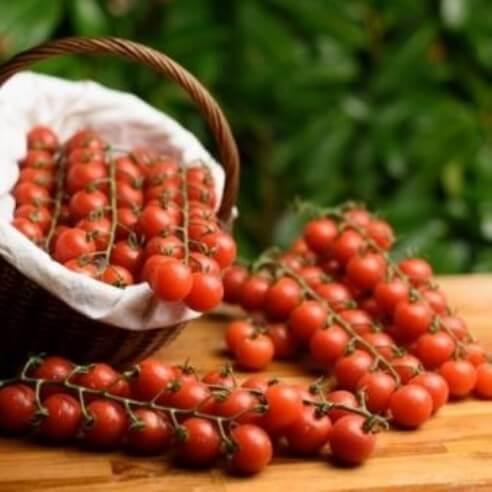 Tomate - Cerise - 1 kg (environ)