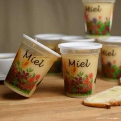 Miel de printemps - Touraine - 1 kg