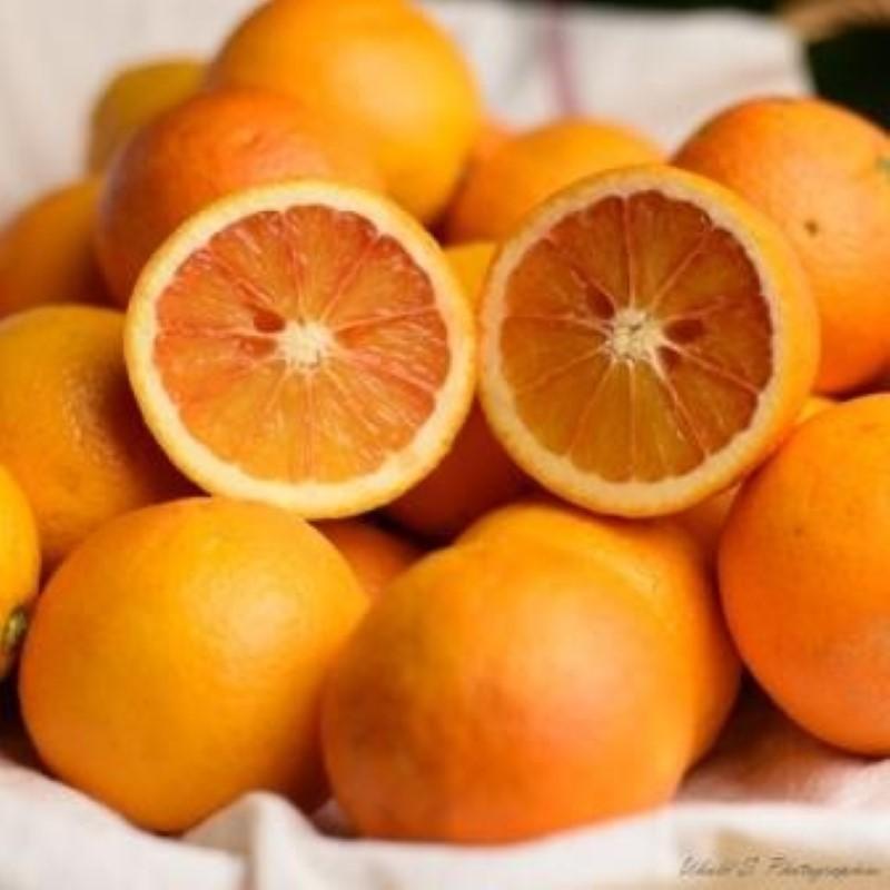 Oranges sanguines - 3 kg (environ)