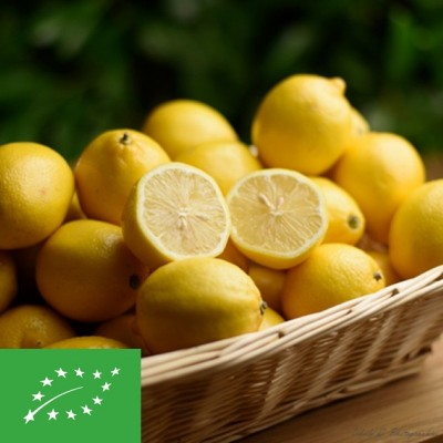 Citron BIO - 1 pièce