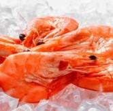 Crevette rose Bio - (environ 500 gr)