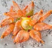 Crevette rose - (environ 500 gr)