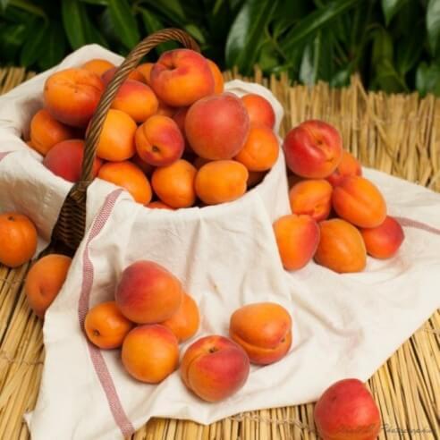 Abricots - Cat 2 - 1 kg (environ)