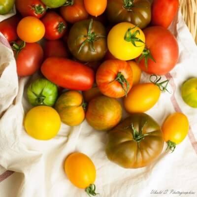 Tomates d'antan - 3,5 kg (environ)
