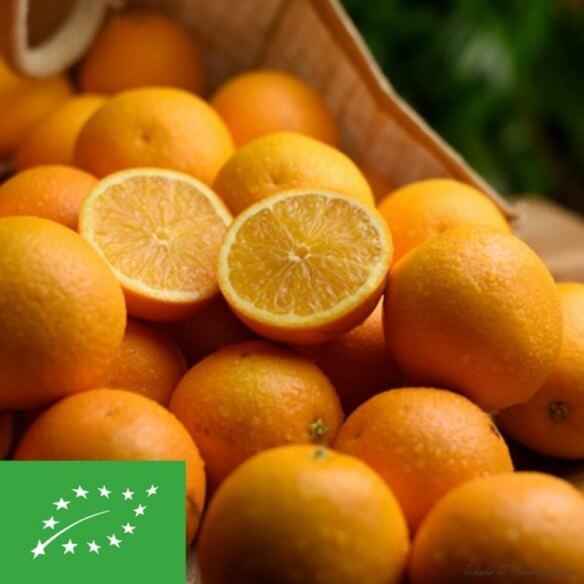 Oranges Navelina RSA BIO (cat. 2) - 1 kg (environ)