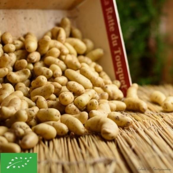 Pommes de terre Grenaille BIO - 500 gr (environ)
