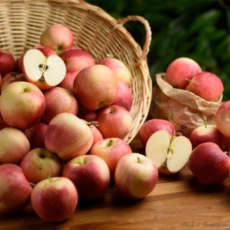 Pommes - Royal Gala - 3 kg (environ)