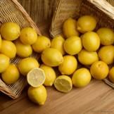 Citrons - 8 pièces
