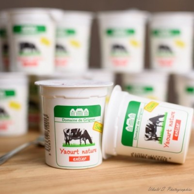 Yaourt - Entier - Sucré - 12 pots