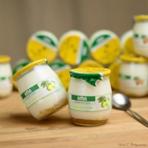 Yaourt - Fermier - citron - 16 pots verre