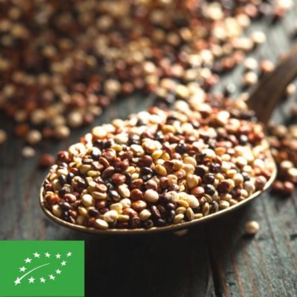 Quinoa BIO - 1kg