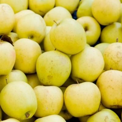 Pommes Golden - 1kg (environ)