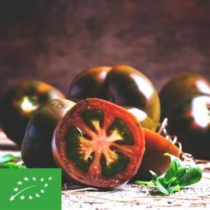 Tomates noires BIO - 500 gr (environ)