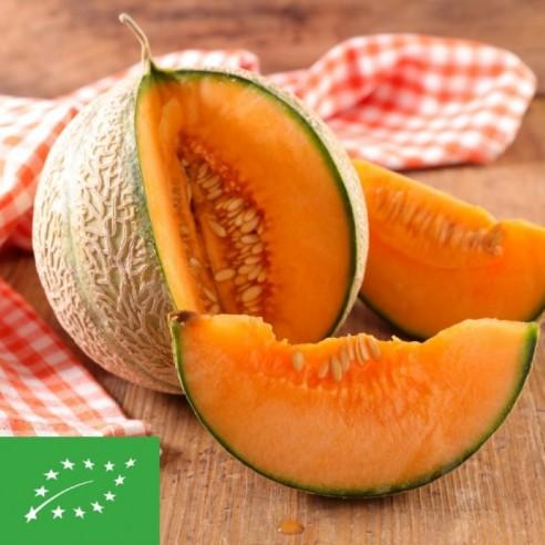 Melons charentais BIO - pièce